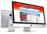 定制网站电子商务高级型